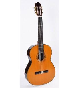 Modelo 8 gitaar, ceder