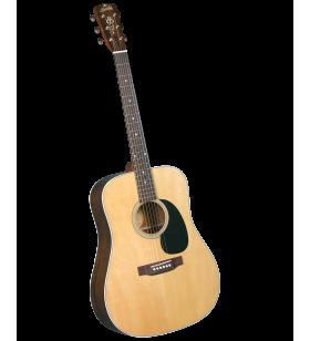 BR-60 Dreadnought gitaar...