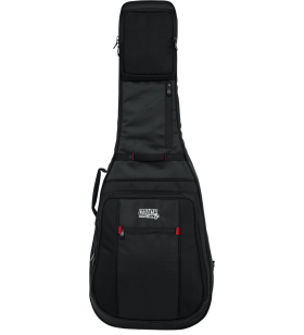 ProGo Acoustic