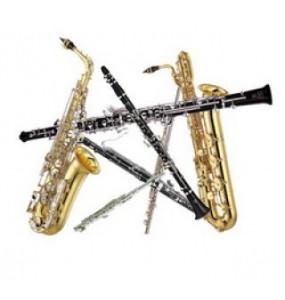 Hout blaasinstrumenten - Vakmanschap en kennis bij Spanjaardmuziek.nl
