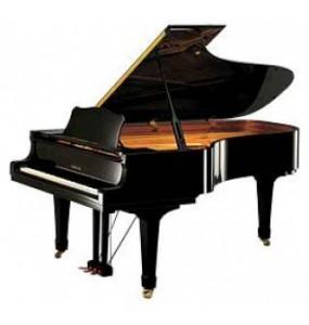Digitale Piano & Vleugels
