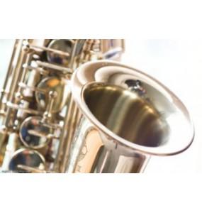 Saxofoons - Vakmanschap en kennis bij Spanjaardmuziek.nl