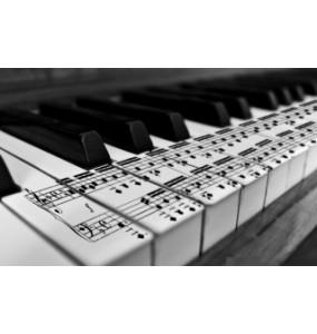 Piano / Keyboard les
