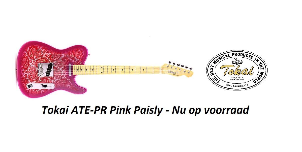 Pink Paisley Breezysound (Telecaster)
